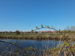 Natur pur - Emden